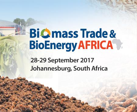biomass energy in africa essay